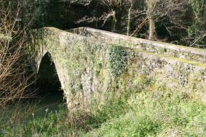 ponte lambre